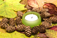 Candle in leaves and cones Royalty Free Stock Photo