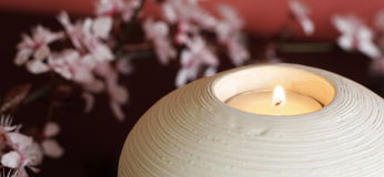 Candle light and blossom branch royalty free stock image