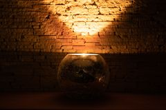 Candle light in dark room inside glass candlestick on beige background stock photo