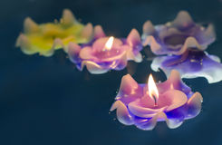 Candle light flower on the water Royalty Free Stock Photography