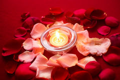 Candle Light With Roses. Burning candles surrounded with aromatic rose petals on a dinning table Stock Photography