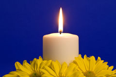 Candle Light and Yellow Daisies Stock Photography