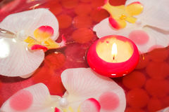 Candle with orchid Stock Image