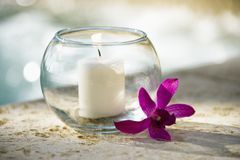 Candle and orchid. Royalty Free Stock Photography
