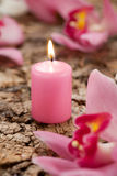 Candle and orchids Stock Image