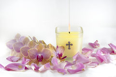 Candle, Orchids, and Rose Petals Stock Photo