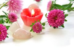 Candle and pink flowers Royalty Free Stock Images