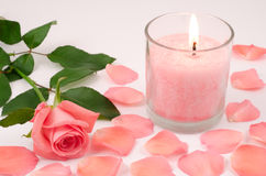 Candle and pink rose. Pink candle and pink rose petals on gray Stock Photography