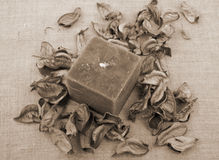 Candle and potpourri Stock Images