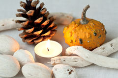 Candle and pumpkin. Decor with candle, cone and pumpkin Royalty Free Stock Photos