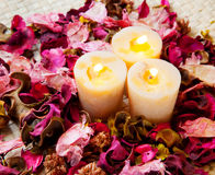 Candle with rose Stock Photo