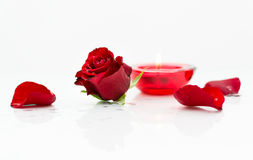 Candle and rose. A candle, a rose head and petals Stock Photos