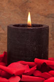 Candle and rose petals. Candle surrounded with red rose petals Royalty Free Stock Photography