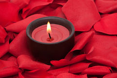 Candle and rose petals. Candle surrounded with red rose petals Stock Image
