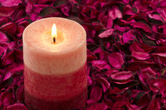 Candle on rose petals Royalty Free Stock Photos