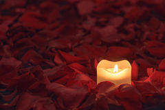 Candle on the rose petals background Stock Photos