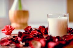 Candle and rose petals. Beautiful romatic composition royalty free stock photos