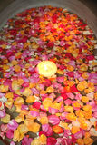 Candle and rose petals. Floating on water Stock Images