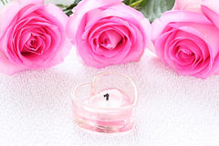 Candle and roses Royalty Free Stock Image