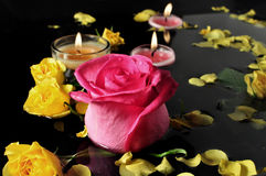 Candle and Roses. A candle  glowing on the water along with beautiful yellow rose and pink petals Stock Photos