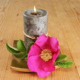 Candle and simple rose. Feng Shui candle and Rosa Ragusa rose Royalty Free Stock Photography