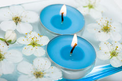 Candle with spring flowers Royalty Free Stock Images