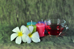 Candle and wild Stock Images