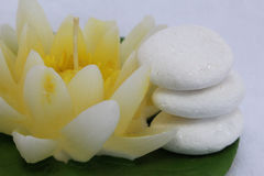 Candle and zen stones. Spa stil llife with lily candle,zen stone on the white background stock image
