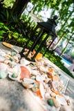 Candleholder shells ground bust close shot sunshine outdoor decoration set Royalty Free Stock Images