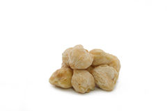 Candlenut Stock Photography