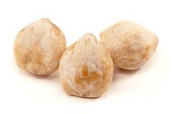 Candlenut, een kruid dat in Aziatische keuken wordt gebruikt Stock Foto's