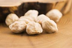 Candlenut or Kukui Stock Photo
