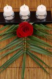 Candles. Rose, palm frond and candles on bamboo Stock Photo