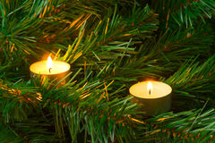 Candles and christmas tree Stock Photo