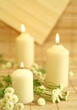 Candles and flowers. Stock Photo