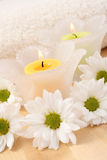 Candles and flowers Stock Images