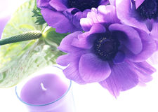 Candles and flowers Royalty Free Stock Photo