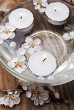 Candles and flowers in a bowl Royalty Free Stock Image