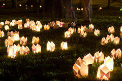 Candles on grass at summer night during Festival of Illumination. CLUJ-NAPOCA, ROMANIA - JUNE 06, 2014: Festival of Illumination (Festivalul Luminii 2014) in royalty free stock images