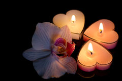 Candles hearts with orchid on black background love Royalty Free Stock Photography