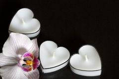 Candles hearts with orchid on black background love Royalty Free Stock Photos