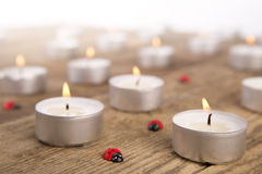 Candles with ladybugs Stock Photos