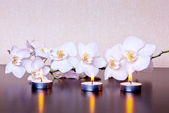 Candles&Orchid Stockfoto