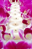 Candles and Orchids Stock Image
