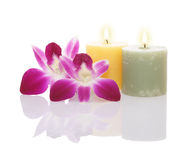Candles and orchids Royalty Free Stock Photos