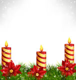 Candles with pine and poinsettia on grayscale Royalty Free Stock Photo