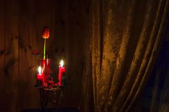 Candles and a tulip Royalty Free Stock Images