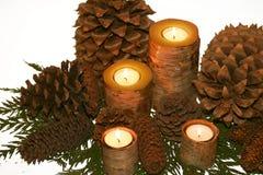 Candlescape de la corteza de abedul Imagen de archivo libre de regalías