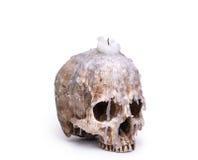 Candlestick od ludzkiej czaszki Fotografia Stock