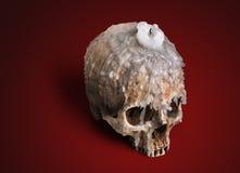 Candlestick od ludzkiej czaszki Zdjęcia Royalty Free